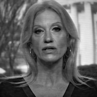 White House Senior Advisor Kellyanne Conway speaks to Chuck Todd on Meet the Press, 22 January 2017. (Detail of frame from NBC News)